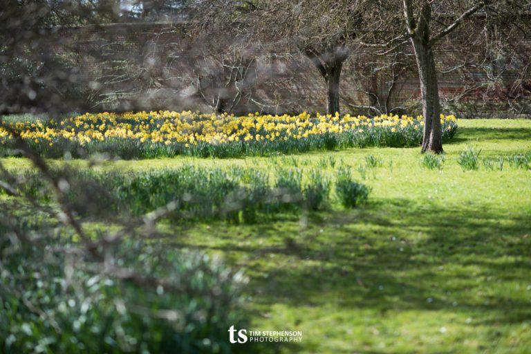 Easter 2016 – Somerleyton Hall & Egg Hunts